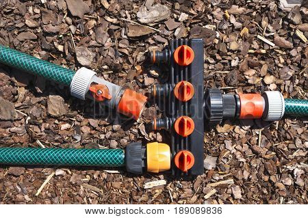 Garden hoses with water hose divider on wood bark mulch coat.