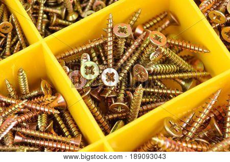 Yelow screw set in plastic organizer box