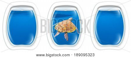 Three porthole frame windows of underwater submarine ship on marine green turtle, Chelonia mydas, swimming in blue water with copy space.