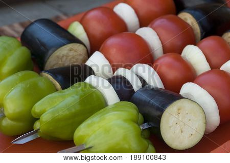 Vegetables (tomato eggplant onion and paprika) are spat for grill cooking.