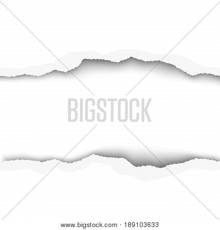 Snatched middle of white paper background with torn edges and space for text or ad. Template paper design.