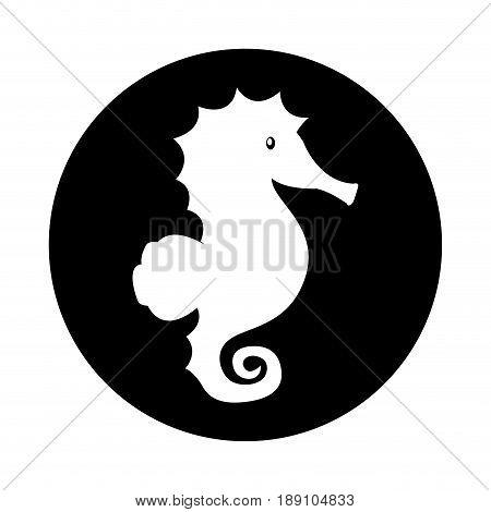 sea horse ocean life vector illustration graphic design