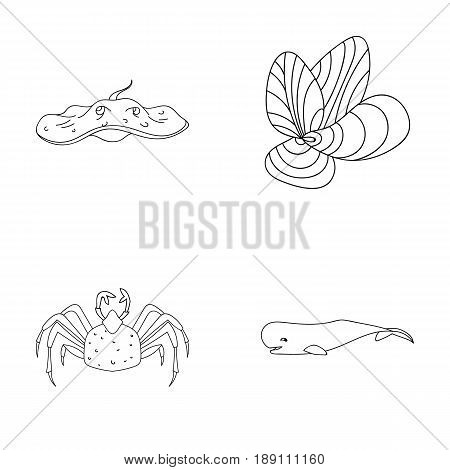 Electric ramp, mussels, crab, sperm whale.Sea animals set collection icons in outline style vector symbol stock illustration .