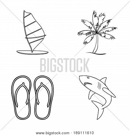 Board with a sail, a palm tree on the shore, slippers, a white shark. Surfing set collection icons in outline style vector symbol stock illustration .