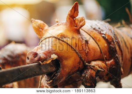 Pig roasted on a spit traditional outdoor food preparation selective focus