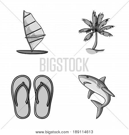 Board with a sail, a palm tree on the shore, slippers, a white shark. Surfing set collection icons in monochrome style vector symbol stock illustration .