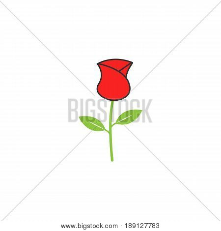 Rose flower for Valentine's day solid icon, for love and 8 march, vector graphics, a colorful linear pattern on a white background, eps 10.
