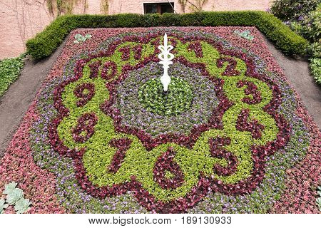 Flowered flower clock in the park at twelve o'clock