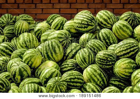 Watermelons striped, ripe near a brick wall