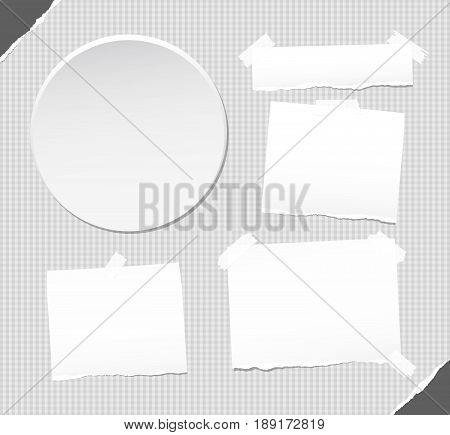 Ripped white note, notebook, copybook stuck with sticky tape on squared background, ripped paper in corners, circle badges, buttons