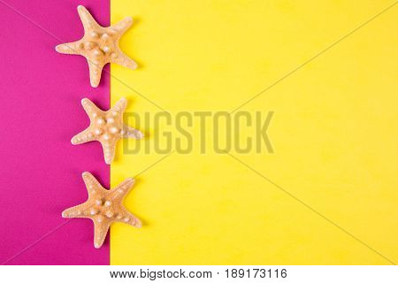 Three Starfishes On Colored Yellow And Crimson Backgrounds With Negative Space, Top View.