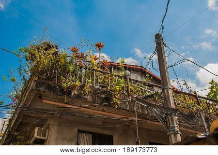 Local Street With Houses In The Philippines Capital Manila.balcony With Flowers