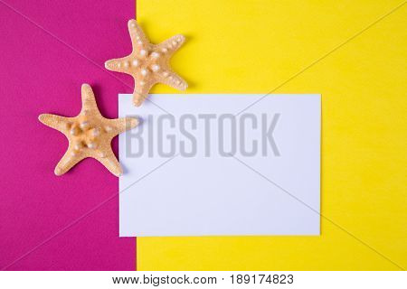 Empty Paper Sheet With Two Starfishes On Colored Backgrounds With Negative Space