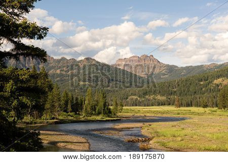 The Lamar Valley holds a river of the same name in Yellowstone Wyoming