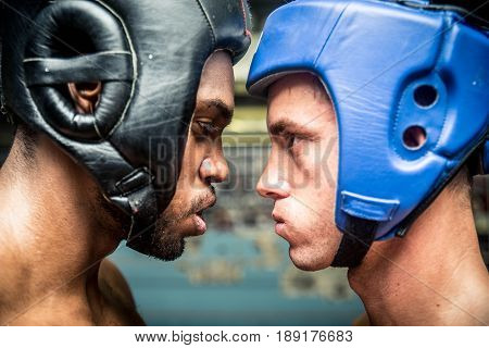 Boxers fighting in a boxing gym - Boxing match