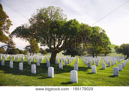 SAN BRUNO, CALIFORNIA, USA - October 27, 2009: Rows of headstones at the San Francisco National Cemetery