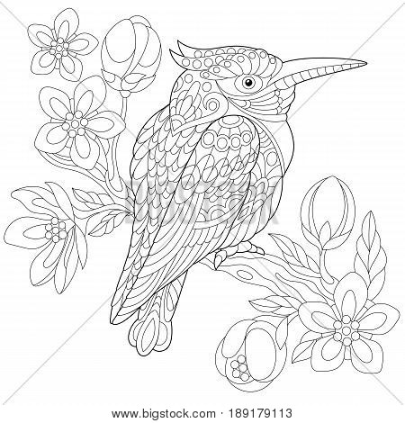 Coloring Page Of Australian Kookaburra (kingfisher Bird) Sitting On Cherry  Blossoming Tree Branch.