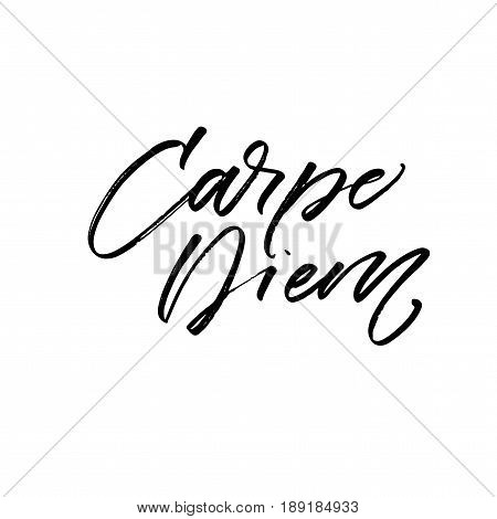 Capture the moment in latin. Carpe diem card. Ink illustration. Modern brush calligraphy. Isolated on white background.