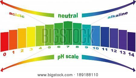 pH scale value , vector isolated .