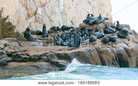 Rising tide on the Sea Lion colony at Lands End in Cabo San Lucas Baja Mexico BCS
