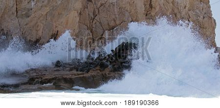 Wave breaking on the Sea Lion colony at Lands End in Cabo San Lucas Baja California Mexico BCS