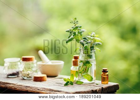 Spa Setting outdoor. Fresh peppermint and peppermint oil on wooden background outdoors.