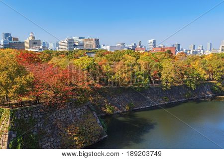 Aerial view of Osaka cityscape in autumn season at Osaka Japan