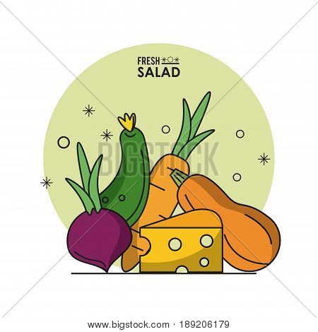 colorful poster fresh salad with beet cucumber carrot and cheese and zucchini vector illustration