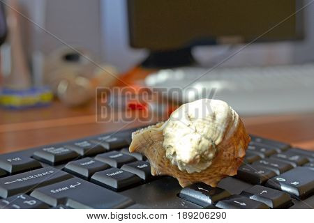 Keyboard with shell - abstract office background.