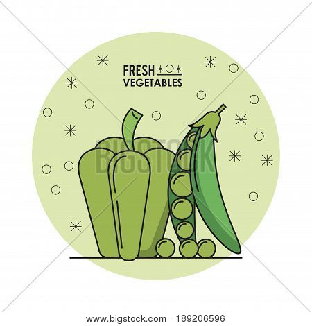 colorful poster of fresh vegetables with green peper and peas vector illustration