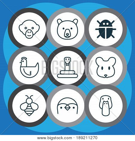 Zoology Icons Set. Collection Of Duck, Baboon, Grizzly And Other Elements. Also Includes Symbols Such As Insect, Chicken, Mallard.