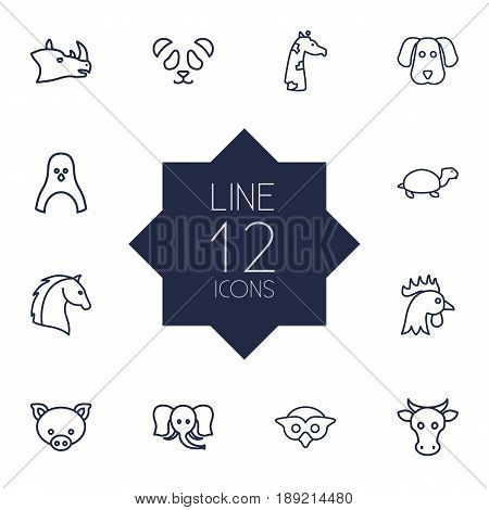 Set Of 12 Animal Outline Icons Set.Collection Of Dog, Cow, Cock And Other Elements.