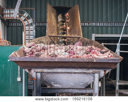 Byproducts from a sheep abattoir in the input bin of a meat and bone rendering plant for processing to meat and bone meal a valuable animal feed supplement.