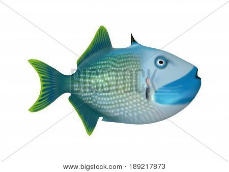 3D Rendering Trigger Fish On White