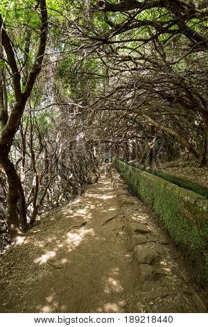 Tourist is walking along levada canal. Madeira island Portugal