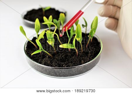 An image of biotechnology - biochemistry, biology, bio