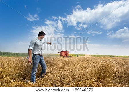 Farmer In Field During Harvest