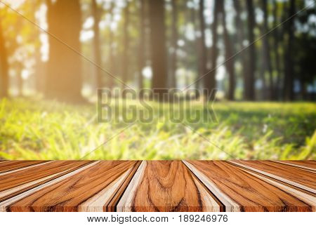 Selected focus empty wooden table and view of green forest blur background with bokeh image. for your photomontage or product display.