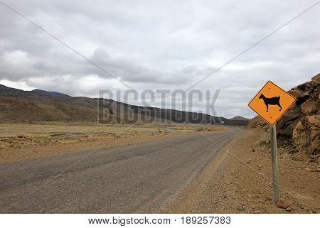 Warning sign for goats on road, Neuquen, Patagonia, Argentina