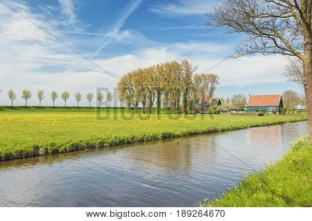 Dike with a row of trees and farmhouse in the Beemster Polder a cultural landscape located north of Amsterdam dating from the early 17th century and an exceptional example of reclaimed land in the Netherlands