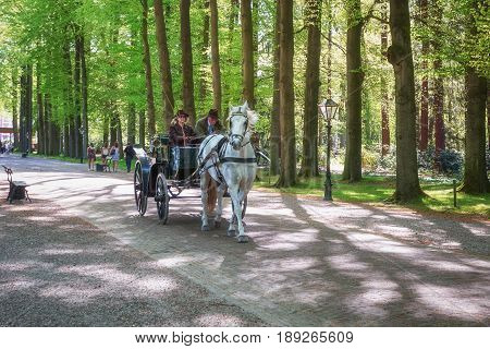 Apeldoorn, The Netherlands, May 8, 2016: Procession of coaches on the lane to the Palace Het Loo in Apeldoorn Netherlands