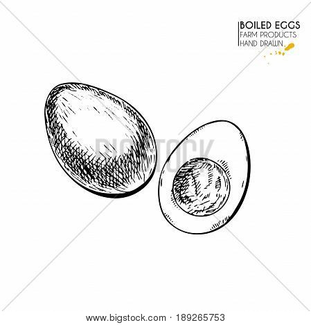 Vector hand drawn set of farm products. Isolated hen boiled egg. Engraved art. Organic sketched farming meal. Use for restaurant, breackfast menu, grocery, market, store, party