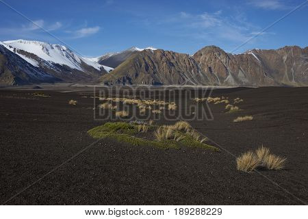 Volcanic plain, high in the mountains of Laguna de Laja National Park in Bio Bio region of Chile.