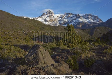 Mountain Sierra Velluda (3,585 m) rising above forested hillsides in Laguna de Laja National Park in the Bio Bio region of Chile.