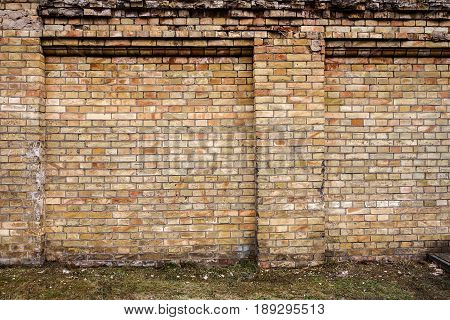 Yellow brick and concrete wall background with green grass
