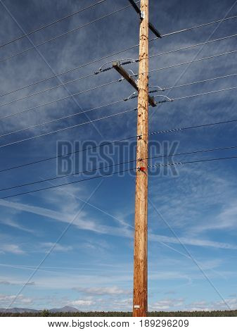 A stunning black and white photo of a power pole in rural Central Oregon standing tall a sunny spring day.