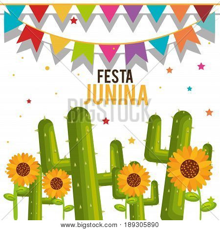Festa junina design with cactus and sunflowers over white background, Vector illsutration.