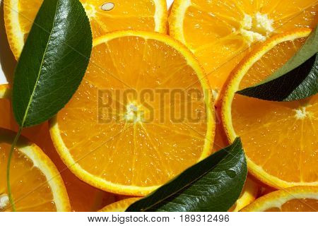Orange fruit. Orange slices half orange whole orange oraange background