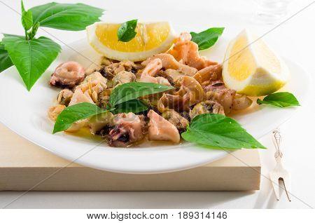 Seafood Salad On A White Plate.