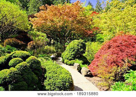 Path Through Beautiful Japanese Gardens, Butchart Gardens, Victoria, Bc, Canada